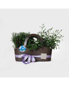 Shopping bag con piante officinali e aromatiche - vari colori